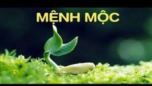menh-moc-rem-cua
